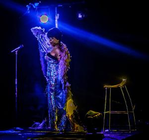Shirley  Bassey Double Lookalike Tribute-1 (28)