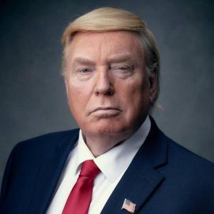 Donald Trump Double Lookalike-1 (1)