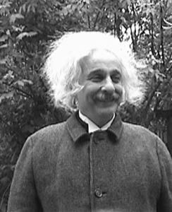 Albert Einstein Double Looklalike-2 (1)