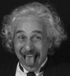 Albert Einstein Double Looklalike-2 (14)
