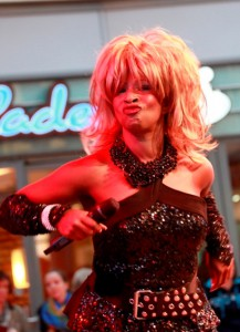 Tina Turner Double 2.0