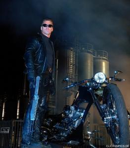 Arnold  Schwarzenegger Double Lookalike-1 (6)