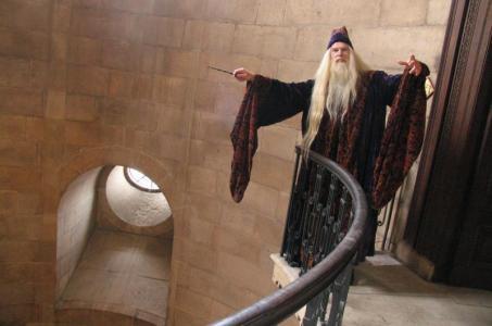 Albus Dumbledore Double Lookalike-1 (7)
