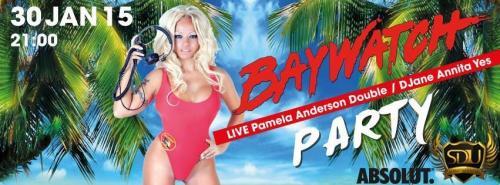 Pamela Anderson Double Lookalike-1 (11)